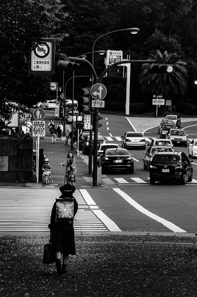 Japan-2014-DSC-0167.jpg